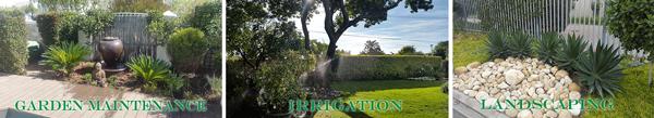 gardensgalore1