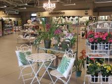 Starke Ayres Garden Centre West Coast Village nursery landscaping flowers plants soil seeds gift shop